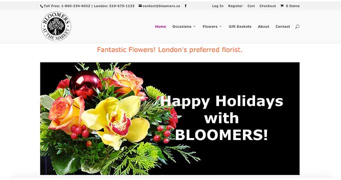 Digital Marketing for Bloomers